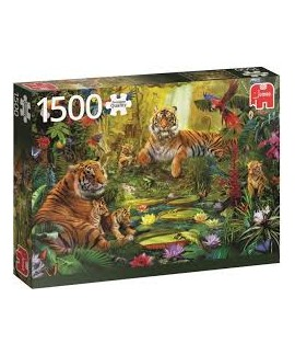 Puzzle - Tiger family in...